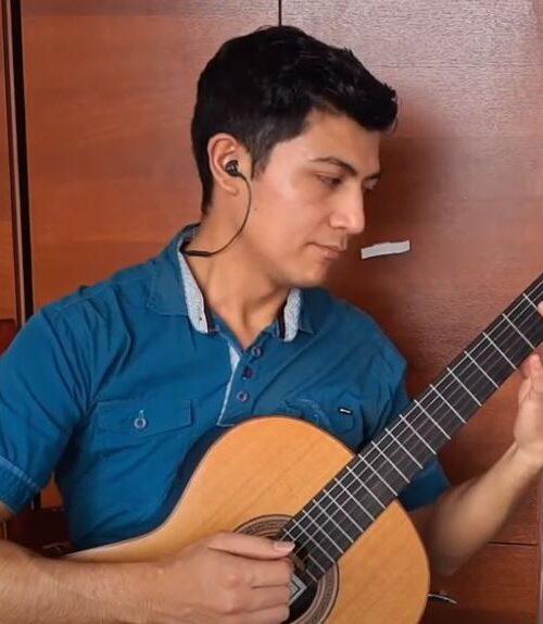 Profesional en guitarra